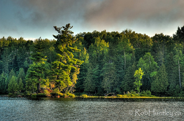 Offshore Island in the early morning light, Big Cedar Lake, Quebec.