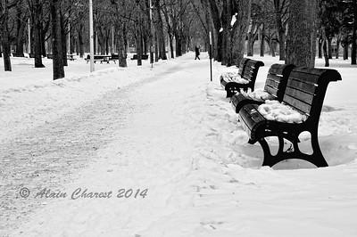 Temps froid sur le Parc Lafontaine