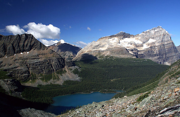 Lake O'Hara and Odaray Mountain (3,159m) from Wiwaxy gap.