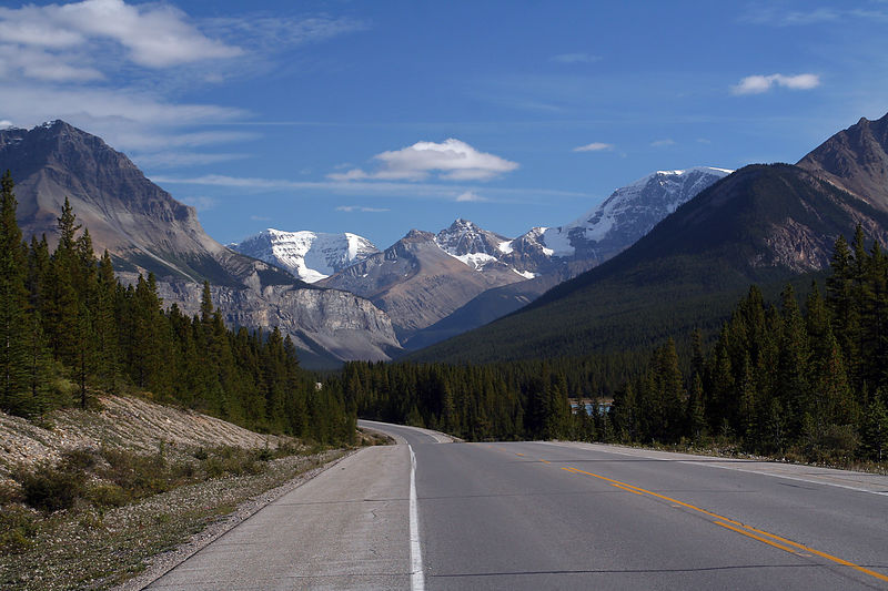 The Icefields Parkway runs through 230 km of stunning views, crossing Banff and Jasper National Parks. The road was open in 1950.