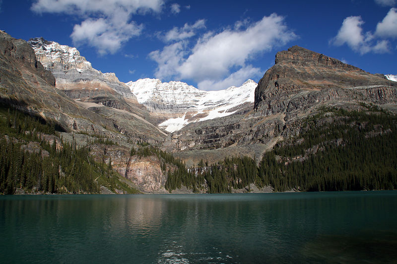 Final view of Lake O'hara and the Yukness Mountains.