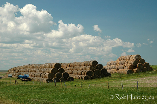 Hay bales stacked four deep on a farm in southern Saskatchewan.