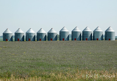 Grain storage silos in a field in southern Saskatchewan. © Rob Huntley