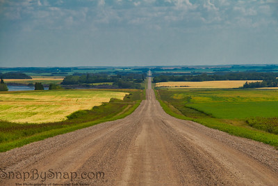 A Straight Dirt Road into the Plains