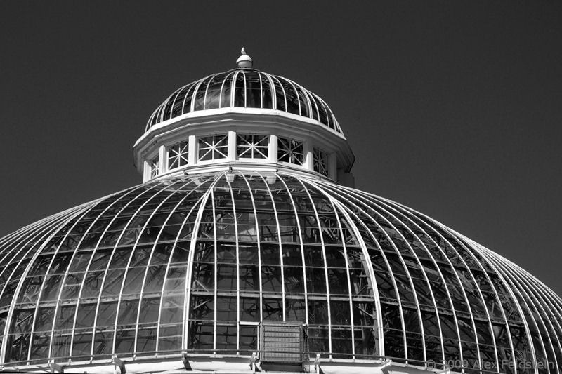 The Palm House at Allan Gardens