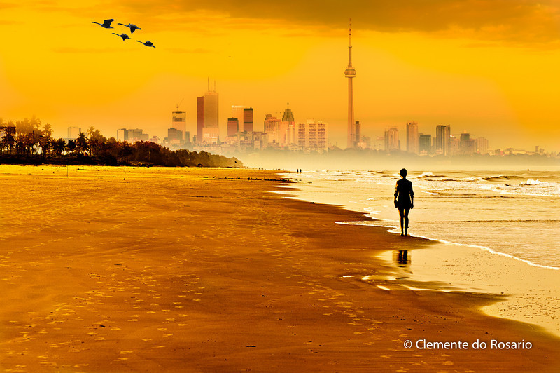 Toronto Waterfront !<br /> <br /> A composite image  of  Varca Beach, Goa, India, Toronto Skyline and Canada Geese processed in Photoshop CS5
