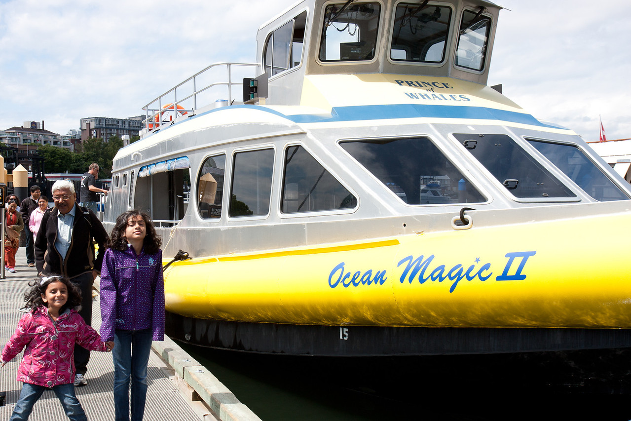 Ocean Magic Boat for Whale Watching