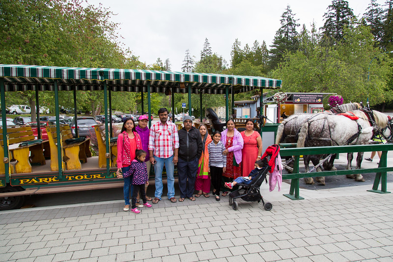 Horse Drawn Carriage Ride at Stanley Park