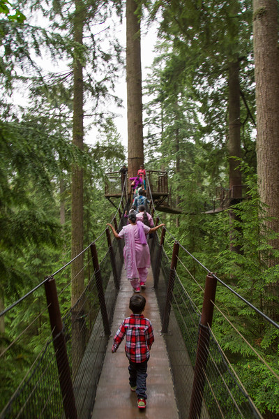 Treetop Adventure/Nature's Broadwalk at Capilano Suspension Bridge