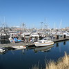 The marina near Fisherman's Wharf