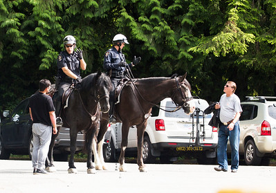 7N9A3289 can police horses