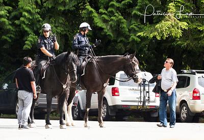 Uniform CAN police horses 3289PatriciaLam Gur