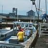 Working boats, Wood Island, PEI.