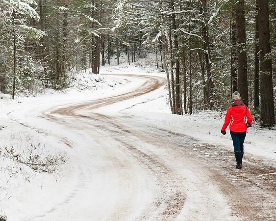 A Winter Walk, Ontario
