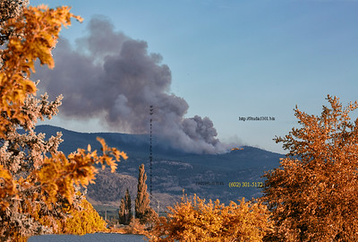 forest fire mtn Fall 4430cf IndS Det ProC_2