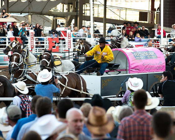 Chuck Wagon Race, Calgary Stampede, 2012