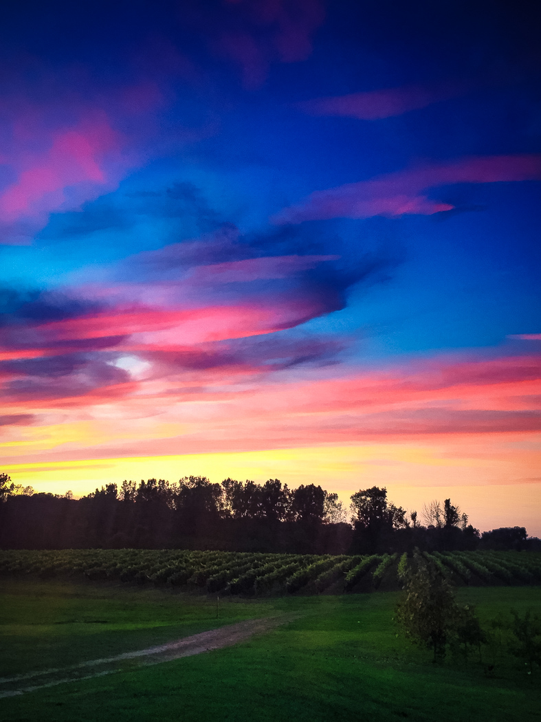 Sunset at Burning Kiln Winery in Ontario, just two hours outside Toronto.