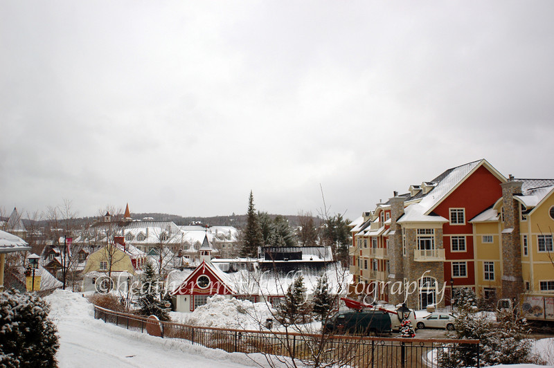 "Mont Tremblant, Québec <form target=""paypal"" action=""https://www.paypal.com/cgi-bin/webscr"" method=""post""> <input type=""hidden"" name=""cmd"" value=""_s-xclick""> <input type=""hidden"" name=""hosted_button_id"" value=""FAHMLMXGAFDMW""> <table> <tr><td><input type=""hidden"" name=""on0"" value=""Sizes"">Sizes</td></tr><tr><td><select name=""os0""> 	<option value=""Matted 5x7"">Matted 5x7 $20.00</option> 	<option value=""Matted 8x10"">Matted 8x10 $40.00</option> 	<option value=""Matted 11x14"">Matted 11x14 $50.00</option> </select> </td></tr> </table> <input type=""hidden"" name=""currency_code"" value=""USD""> <input type=""image"" src=""https://www.paypal.com/en_US/i/btn/btn_cart_SM.gif"" border=""0"" name=""submit"" alt=""PayPal - The safer, easier way to pay online!""> <img alt="""" border=""0"" src=""https://www.paypal.com/en_US/i/scr/pixel.gif"" width=""1"" height=""1""> </form>"