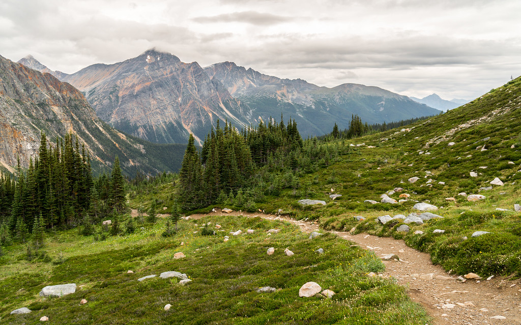 Cavell Meadows Trail, Jasper National Park, Alberta, Canada