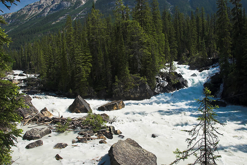 Athabasca Falls area - river confluence
