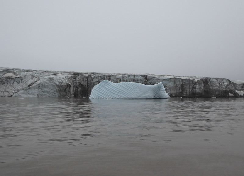 Glacier in the background with some sea ice.