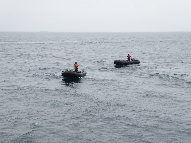 The Zodiacs being deployed for the last time on our trip.