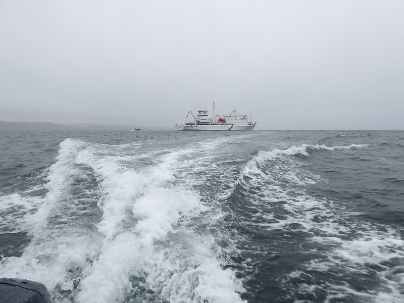 Looking back at the Vavilov as we headed to shore - about a mile in drizzly conditions and higher winds than normal for Zodiac outings.
