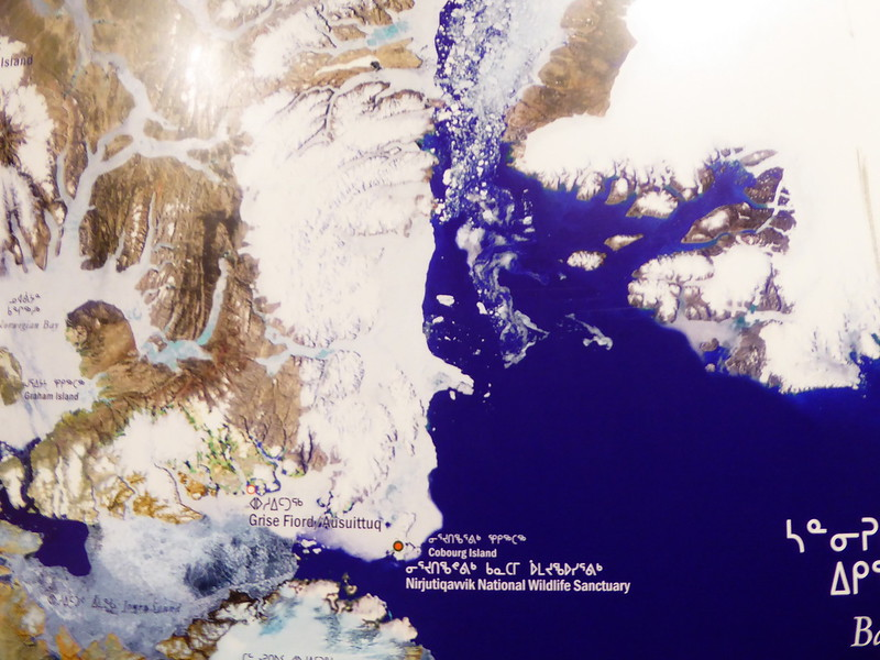 Map in Unikkaarvik Visitor Centre. This shows Grise Fjord which we were unable to get to and at the very top is Alexandra Fjord which we were also unable to get to.