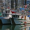 Classic Salmon fishing boats