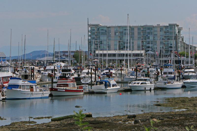 Sidney Yacth Harbor