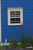 A window in a house on a street in Trinity NF