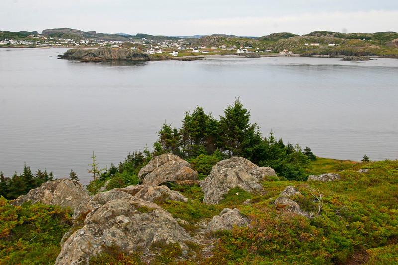 Twillingate Harbor