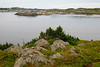 Twillingate Harbor