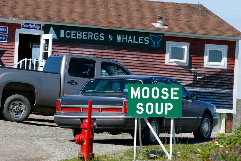 Food is certainly unuique in NF I also sampled, Cod Tounges, Cod Cheeks, Cod Filets, Cod Casseroule,  Scallops, Mussels, Clams, Haddock, Snow Crab, Lobster, Shrimp, Capplien, Smelt, Char and Herring. They also offer lots of salmon, but its all farmed and I don't eat farmed salmon.