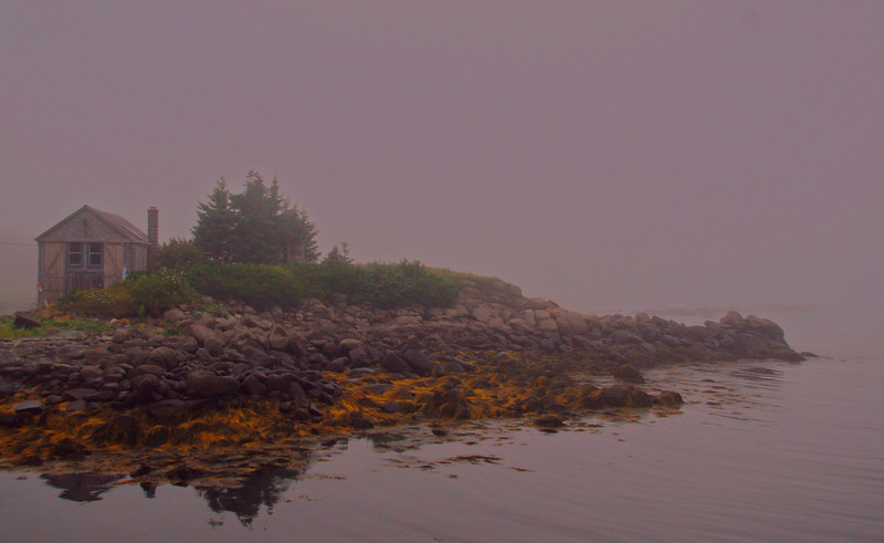 A quiet morning on a cove near the house.