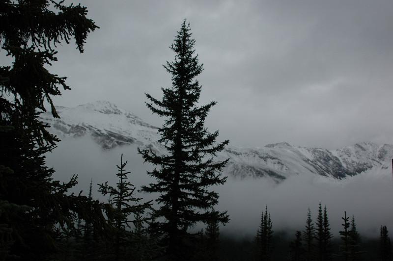 The mountains around Peyto Lake