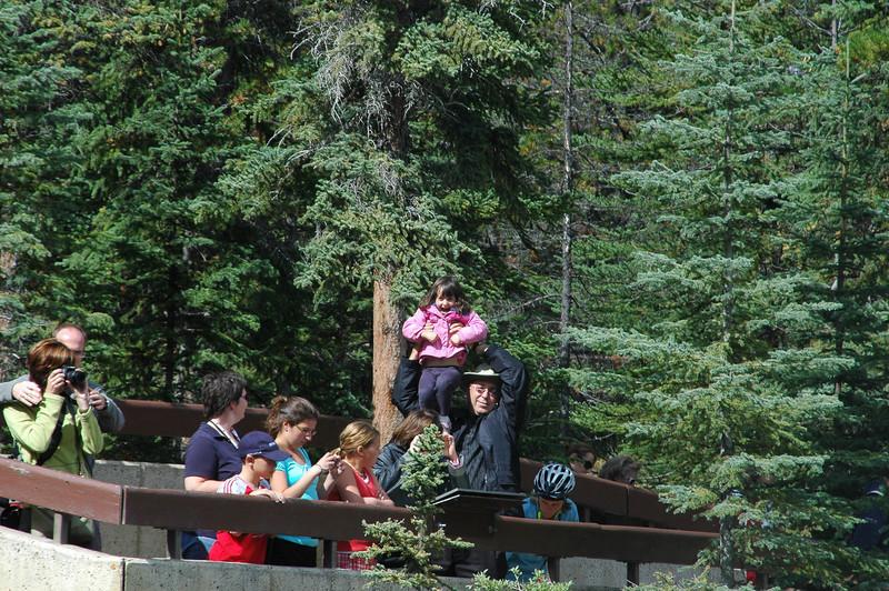 Samantha and Elliot at Athabasca Falls
