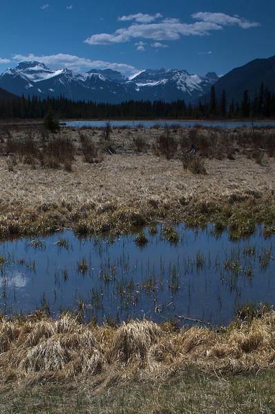 Fenland Loop in Banff