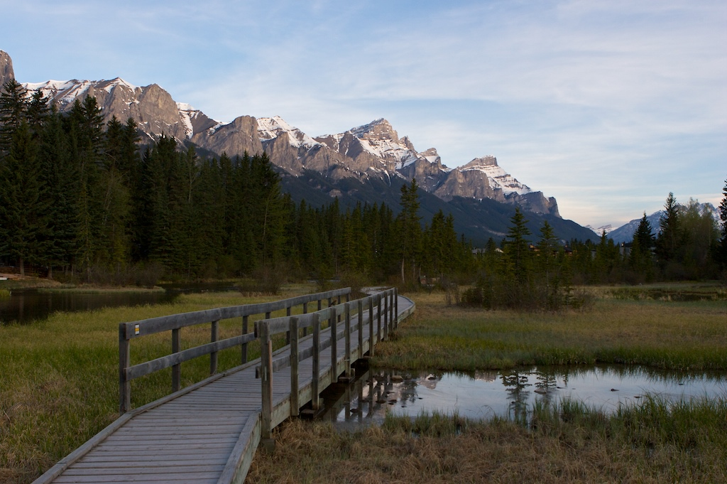 Nature walk in Canmore.