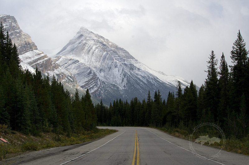 A mountain looms over the roadway along the Icefields Parkway, Banff National Park