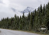 Fresh snow along the Icefields Parkway on Sept 10, 2012, Banff National Park
