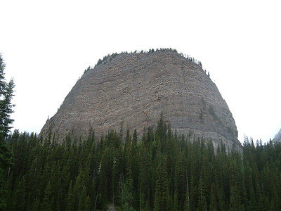Canadian Rocky, Lake Louise Area 2004