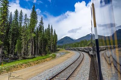 Train Refelection