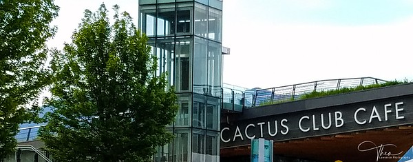 Cactus Club Cafe, Vancouver