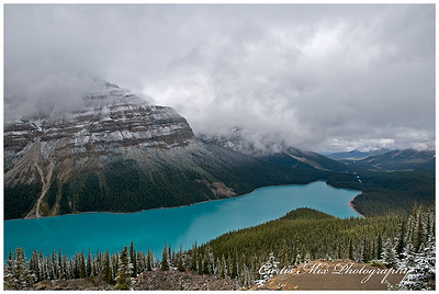 Peyto lake. See the wolf head.