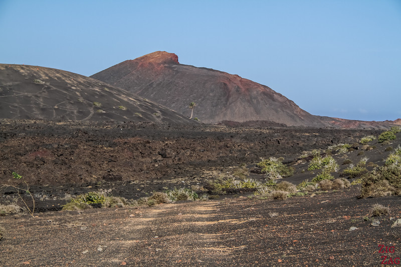 Tremesana Timanfaya National Park Walking Tour - Photo 2