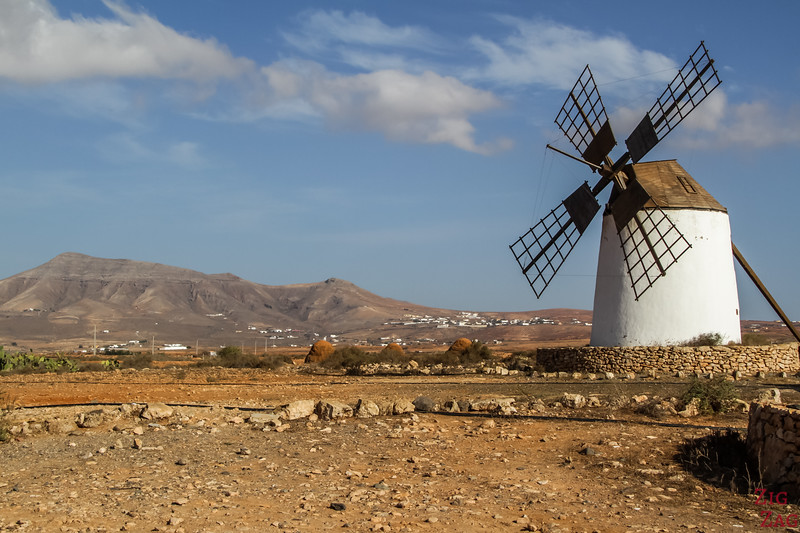 what to see in Fuerteventura - windmills