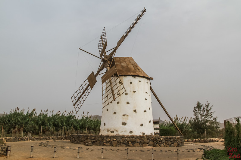 what to see in Fuerteventura - windmills 2
