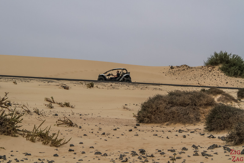 Corralejo Dunes Natural Park buggy tour