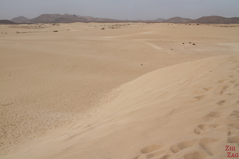 Corralejo Sand dunes Natural park photo 2